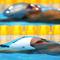 006-OlympicsDayFive.jpg
