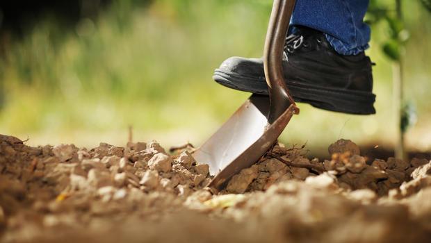 Backyard digging poses unseen hazards - CBS News