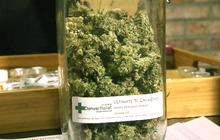 Colo. marijuana legalization caught between federal and state law