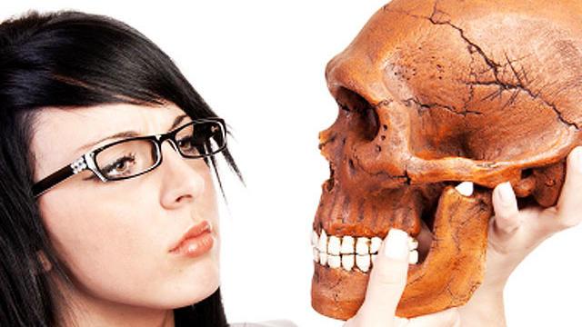 scientist, research, skull, prehistoric, neanderthal, stock, istockphoto, 4x3