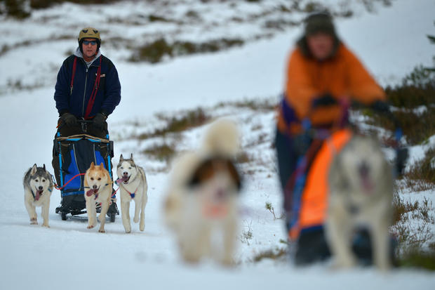 Dog sledders prepare for U.K. race