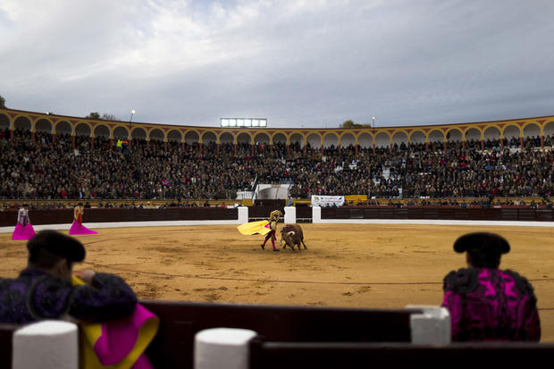 Stunning photos of Spain's bullfighters