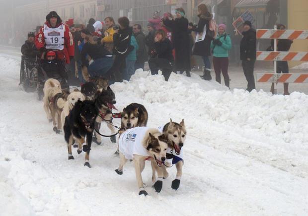 The Iditarod 2013 takes off