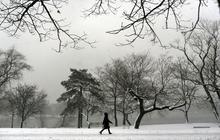 March's snowy start