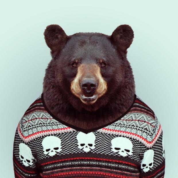 bear_154583714.jpg