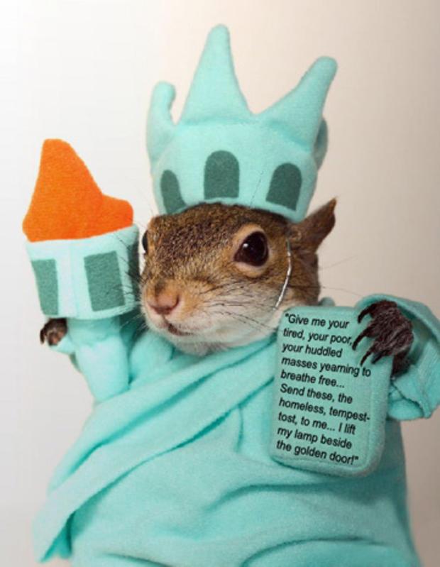 030_Sugar_Bush_Squirrel_as_The_Statue_of_Liberty.jpg