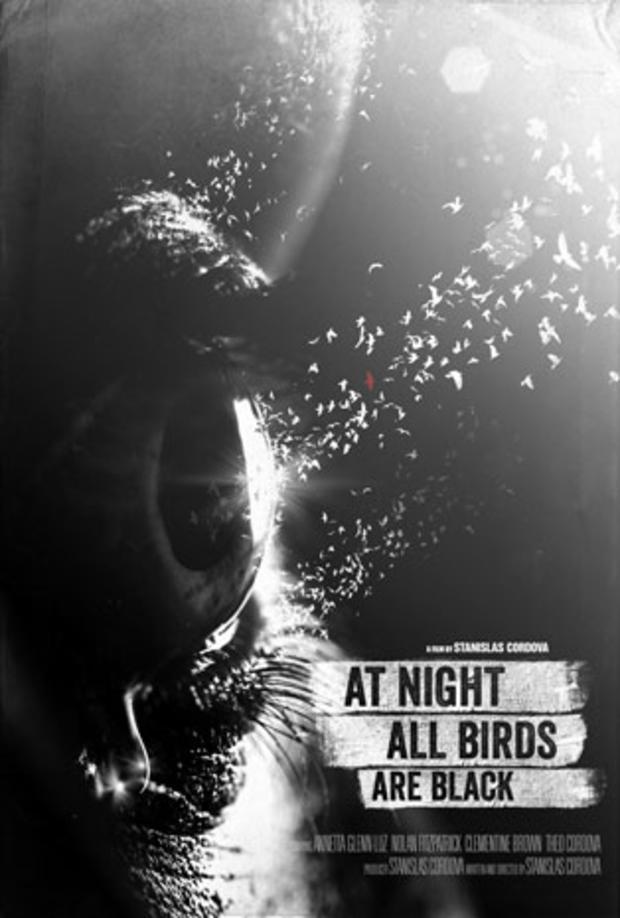 Pessl_birds.jpg