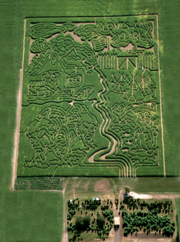 2004_Richardson_maze.jpg