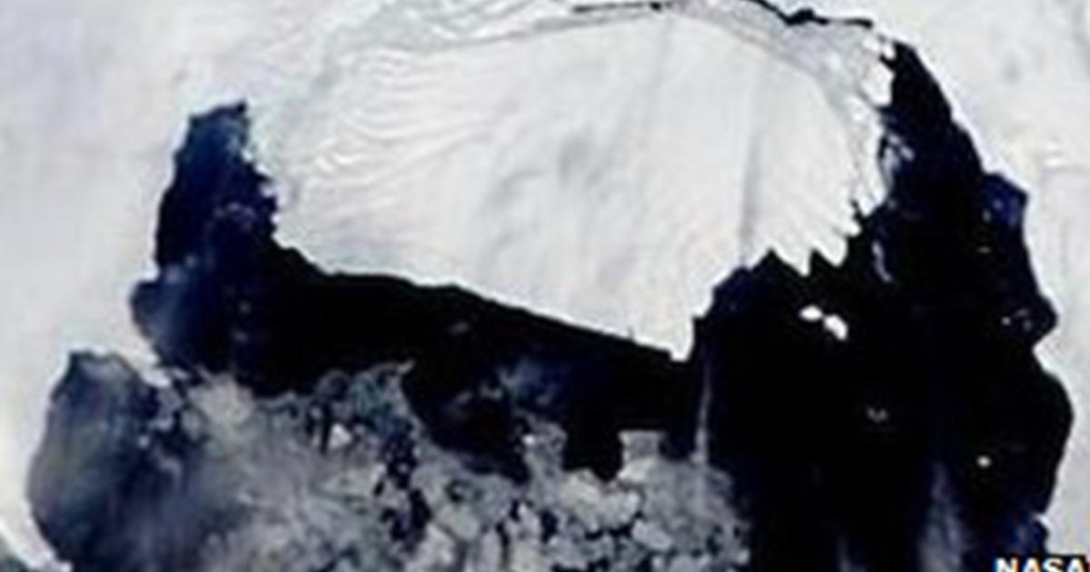 Satellite tv for pc footage existing iceberg bigger than Seattle chop again free from Antarctic glacier thumbnail