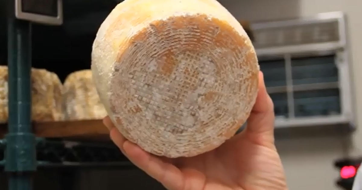 Scientists Create Cheese From Human Toe Bacteria Cbs News