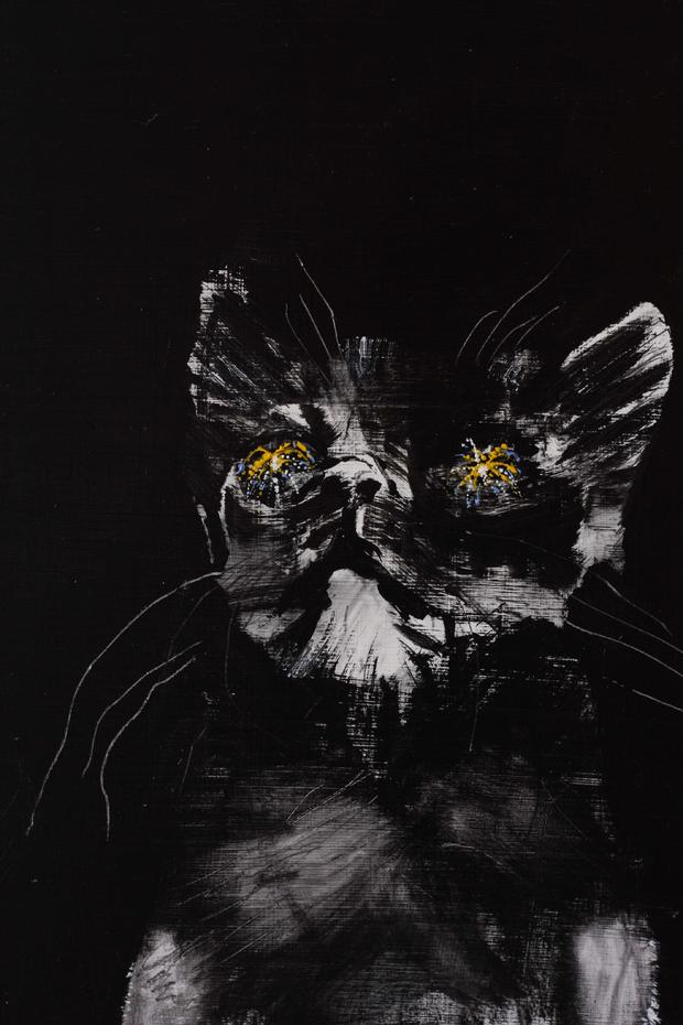 Cat Art Show