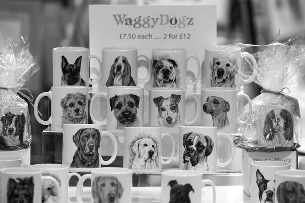 Crufts dog show
