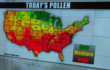 Allergy survival guide: Rough winter may lead to uncomfortable spring