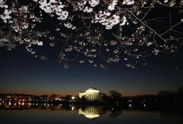 Washington D.C. pretty in pink