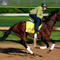kentucky-derby-samraat-487630315.jpg