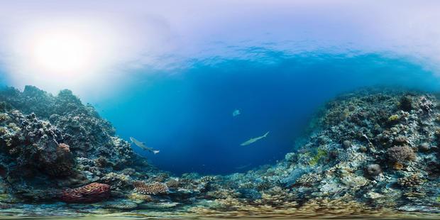 tubbataha-reefs-natural-park-philippines-1.jpg