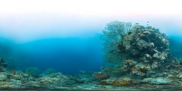 tubbataha-reefs-natural-park-philippines.jpg