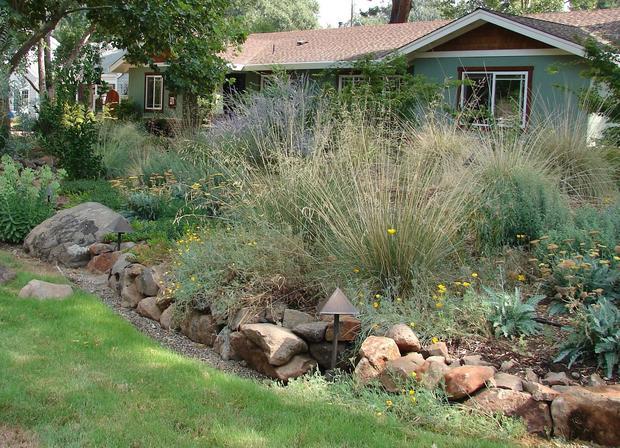 5 ways to create a grass-free garden