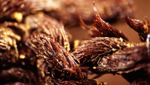 flax-closeup350.jpg