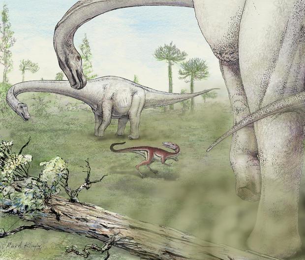 artist-rendering-1-klingler-dreadnoughtus-reconstruction.jpg