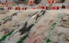 Eating fish can help women prevent hearing loss, study finds