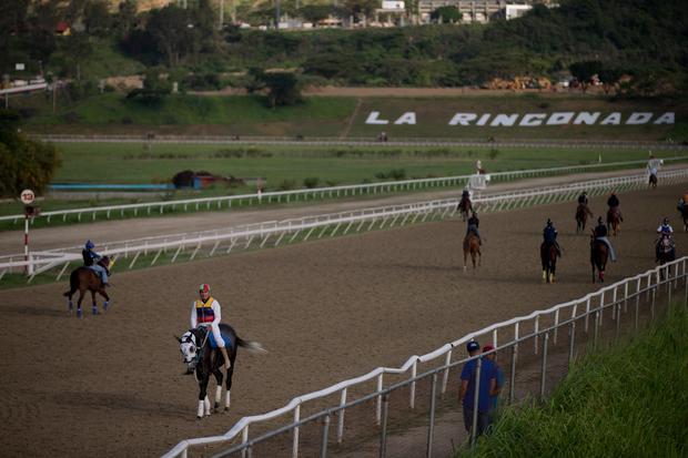 The horse mafia of Venezuela