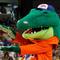 mascots-gators-110686244.jpg