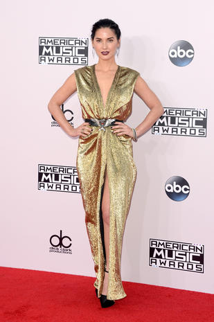American Music Awards 2014 red carpet