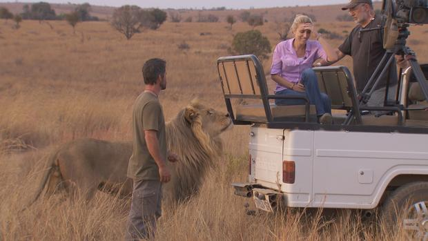 Clarissa Ward and Kevin Richardson with lion