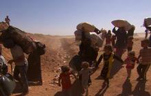 U.N. program suspends food program for Syrian refugees