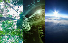 The year to come in SciTech: Expert predictions for 2015