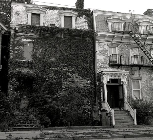 ivy-houseeleganthouse.jpg
