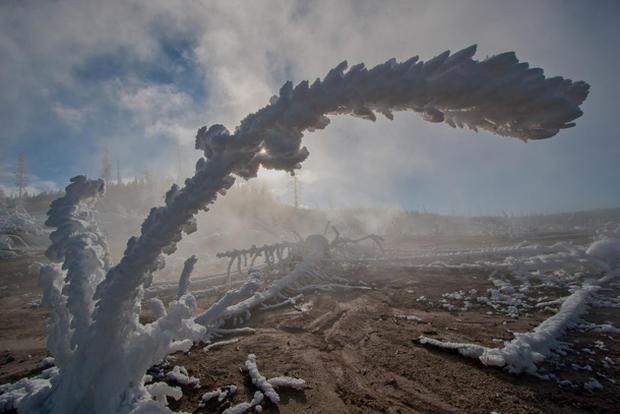 Winter in Yellowstone