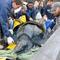 south-carolina-aquarium-sea-turtle-rescue-program-leatherback-sea-turtle-march-2015-7.jpg