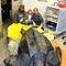 south-carolina-aquarium-sea-turtle-rescue-program-leatherback-sea-turtle-march-2015-20.jpg