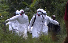 WHO delayed sounding alarm on Ebola outbreak