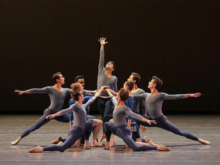 Details about  /ARA Women/'s Betty Ballet Flat Choose SZ//color