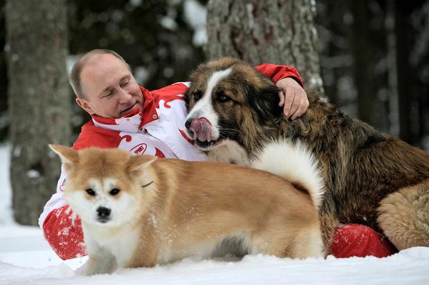 putin_dogs_166205260.jpg