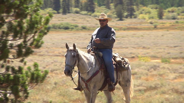reid-horses-1frame70453.jpg