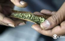 IRS gives cannabis church tax-exempt status