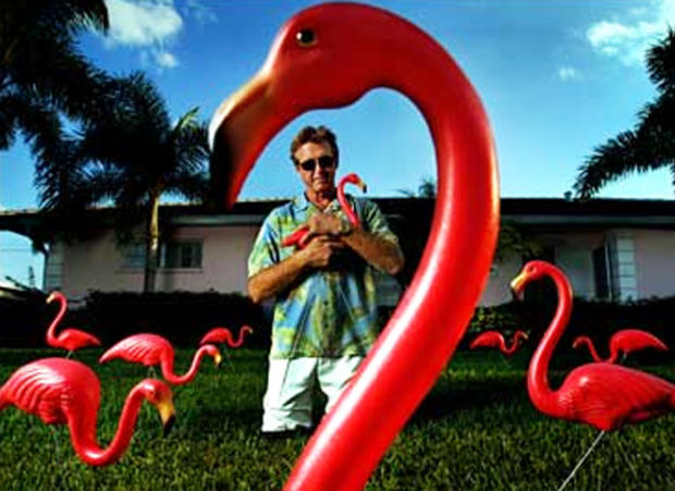 pink-flamingo-collection-ap-660.jpg