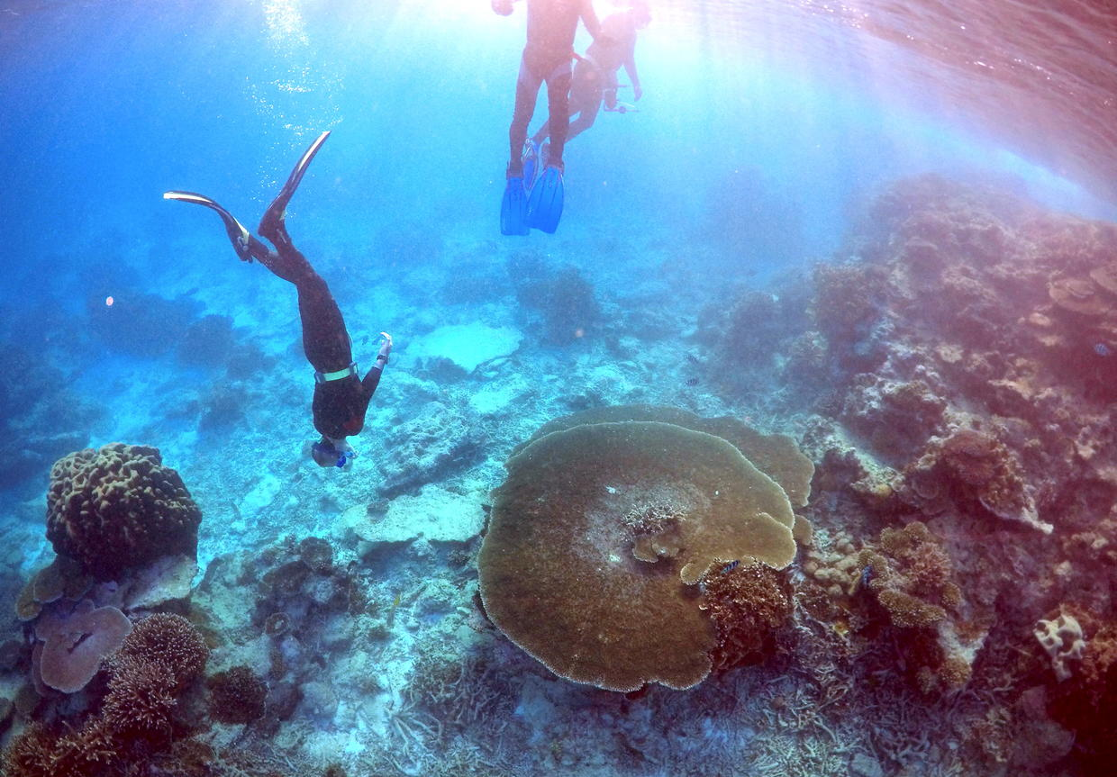 the great barrier reef a majestic product of mother nature