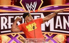 WWE scraps Hulk Hogan after using n-word