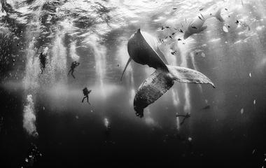 2015 National Geographic Traveler Photo Contest winners