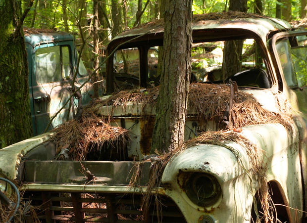 Rotting Art A Museum Of Junked Cars Pictures CBS News - Pictures of old cars