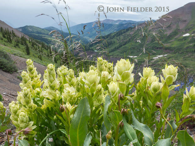 John Fielder's Colorado