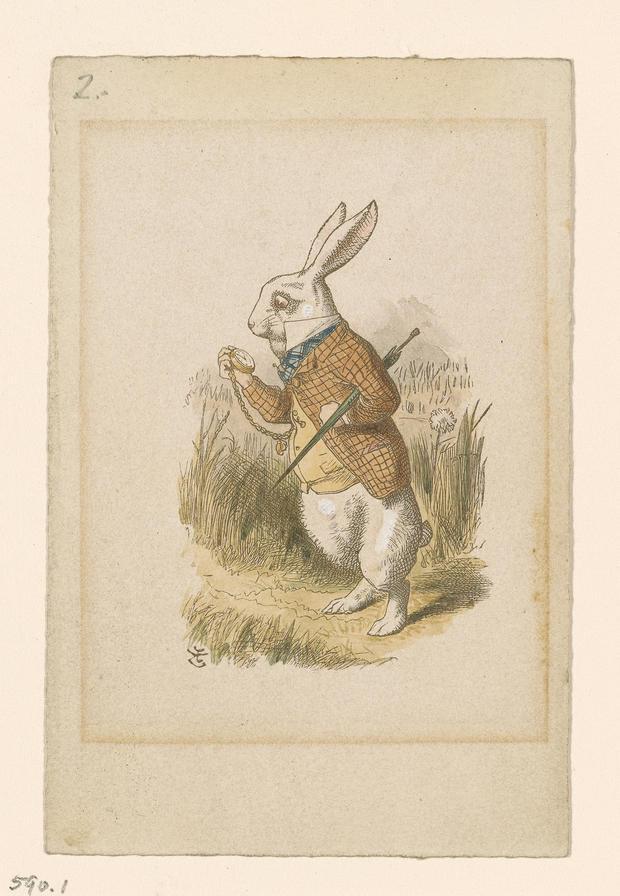 7-the-white-rabbit.jpg