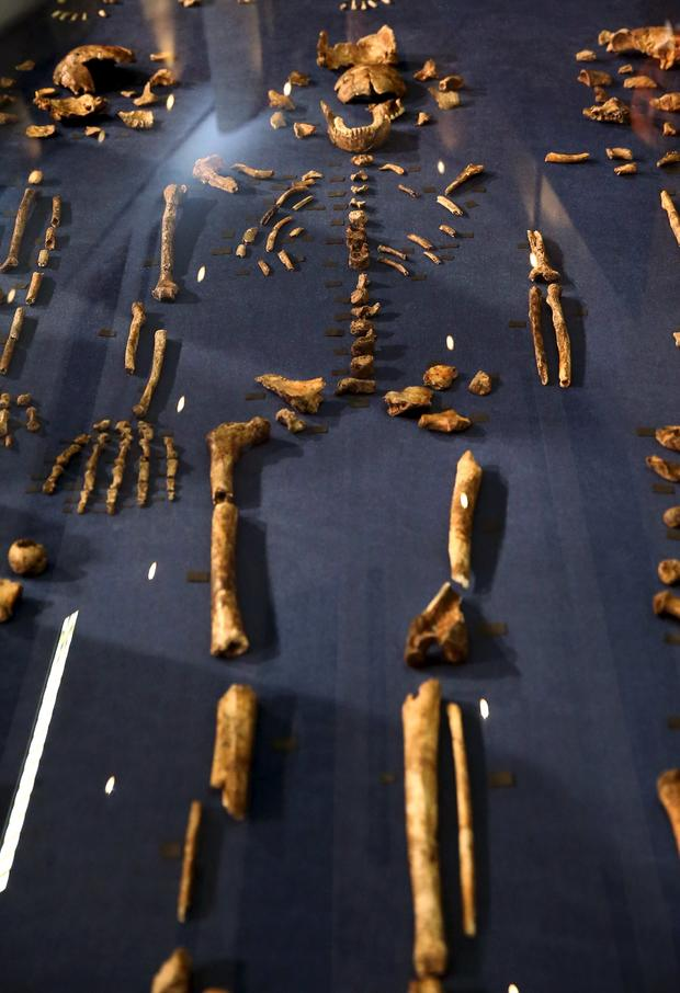 2015-09-10t114220z1236253379gf10000200168rtrmadp3archaeology-burials.jpg