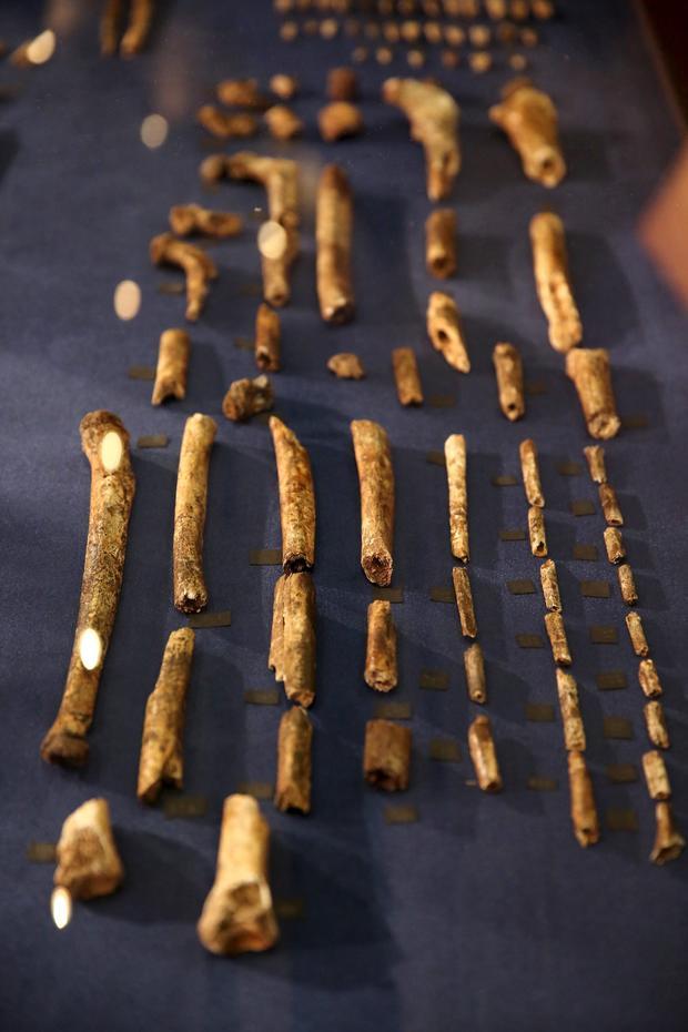 2015-09-10t110226z1184415480gf10000200141rtrmadp3archaeology-burials.jpg