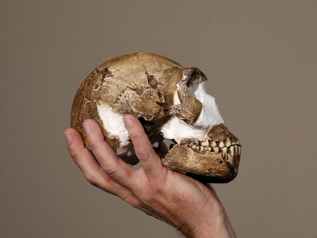 """Professor Lee Berger holds a replica of the skull of a newly discovered ancient species, named """"Homo naledi"""", during its unveiling outside Johannesburg"""